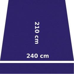 Store Lacanau 242 x 210 Violette : descriptif