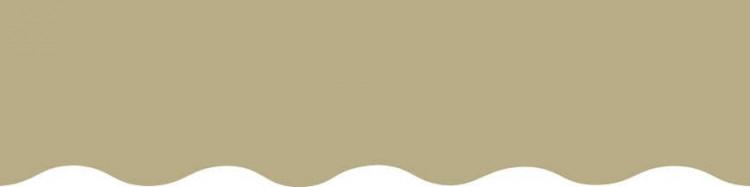 Stores avec toiles Vert Absinthe ( largeurs en façade  300 à 600 cm )