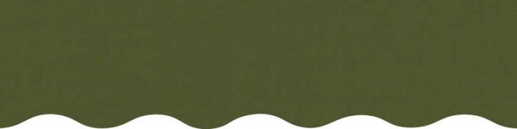Stores avec toiles Vert Réséda ( largeur en façade 400 cm )