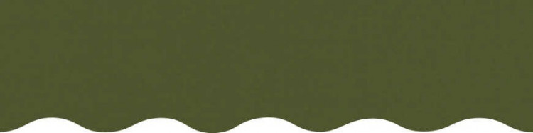 Stores avec toiles Vert Réséda ( largeur en façade 600 cm )