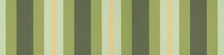 Stores avec toiles Capri Vert ( largeur en façade 300 cm )