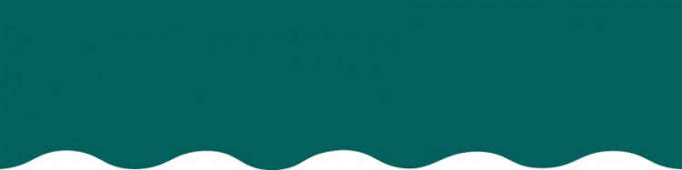 Stores exterieurs et interieurs toile unie couleur unie Vert Emeraude