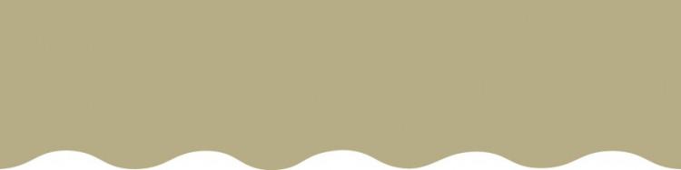 Toile unie couleur Vert Absinthe