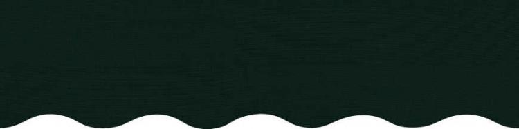 Stores avec toile vert hemlock tweed