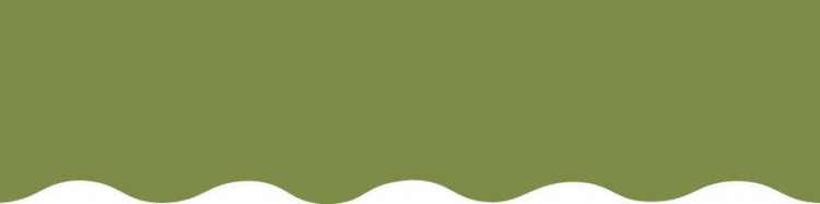 Stores avec toiles Vert Amande ( largeur en façade 500 cm )