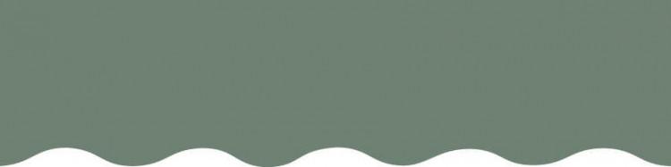 Stores avec toiles Vert Fougère ( largeur en façade 350 cm )