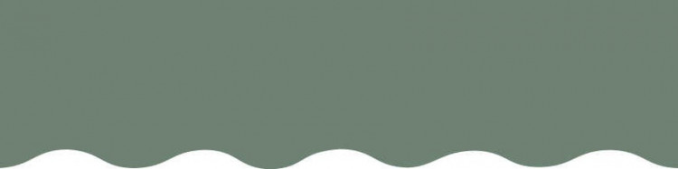 Stores avec toiles Vert Fougère ( largeur en façade 600 cm )